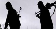 11 PKK'lı Gözaltına Alındı