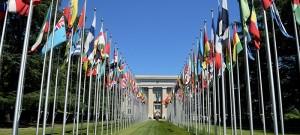 BM Çin'den Organ Trafiğini Durdurmasını İstedi