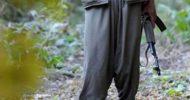 21 PKK'lı Ölü Olarak Ele Geçirildi