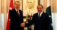 Pakistan'dan Destek