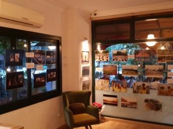 Mersin'de Falun Dafa'nın Yolculuğu Fotograf Sergisi Düzenlendi