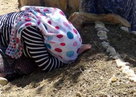 Teröristlerin Saldırısı Sonucu Hayatını kaybeden AK Parti'li Mercan'ın Cenazesi Defnedildi