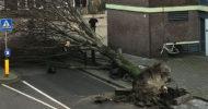 Almanya'da Şiddetli Kasırga Bekleniyor