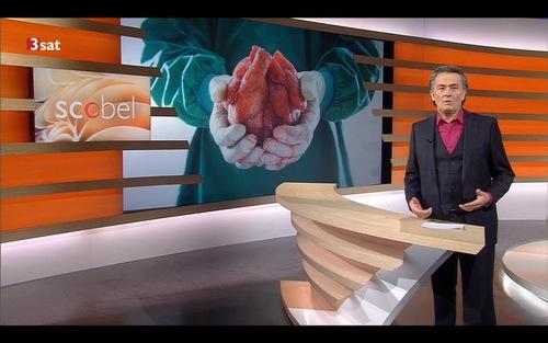 Talk show sunucusu Bay Gert Scobel Çin'deki organ toplama üzerine başlıklı panele ev sahipliği yaptı.