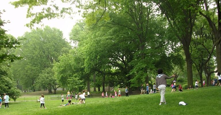 Anaokulu çocukları Central parkta özgürce oyun oynuyorlar