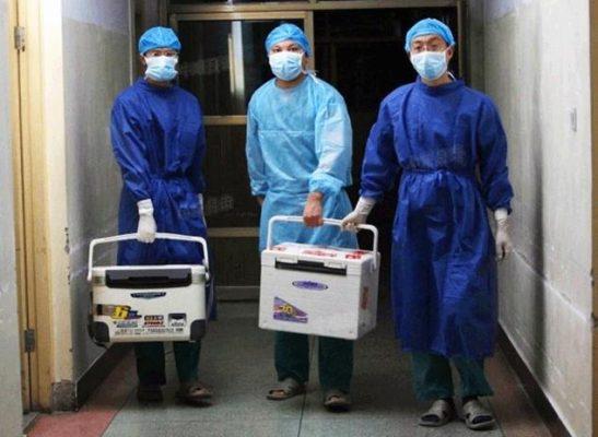 Henan,16 Ağustos 2012, Çinli Doktorlar organ nakil kutularını taşıyorlar. (Fotoğraf: Screenshot Sohu.com )