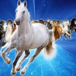 Çinliler At Burcu İçin Neler Söylüyor?
