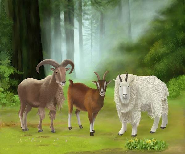 """""""Üç keçi ahenk getirir."""" sözü Keçi Yılının en popüler tebriklerinden biridir. Keçi Burcu altında gelecek olan Çin Yeni Yılında, Çinliler buluştuklarında birbirlerini bu gibi iyi dileklere kutlayacaklar. (SM Yang/Epoch Times)"""
