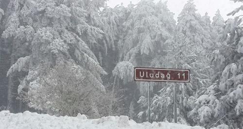 Uludağ yolu yoğun kar yağışı sebebiyle trafiğe kapandı (İHA)
