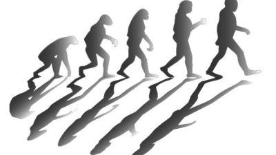 Çin'de Bulunan 260,000 Yıllık Kafatası, Evrimin Tarihini Yeniden Yazdırabilir
