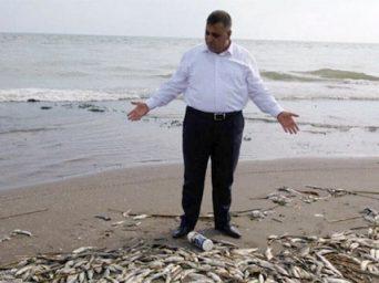 Mersin'deki Balık Ölümleri Korkuttu